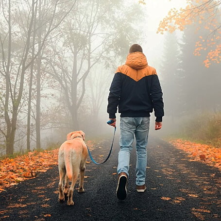 Dueño paseando con su perro raza labrador