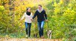 Adiestramiento Canino Gratis
