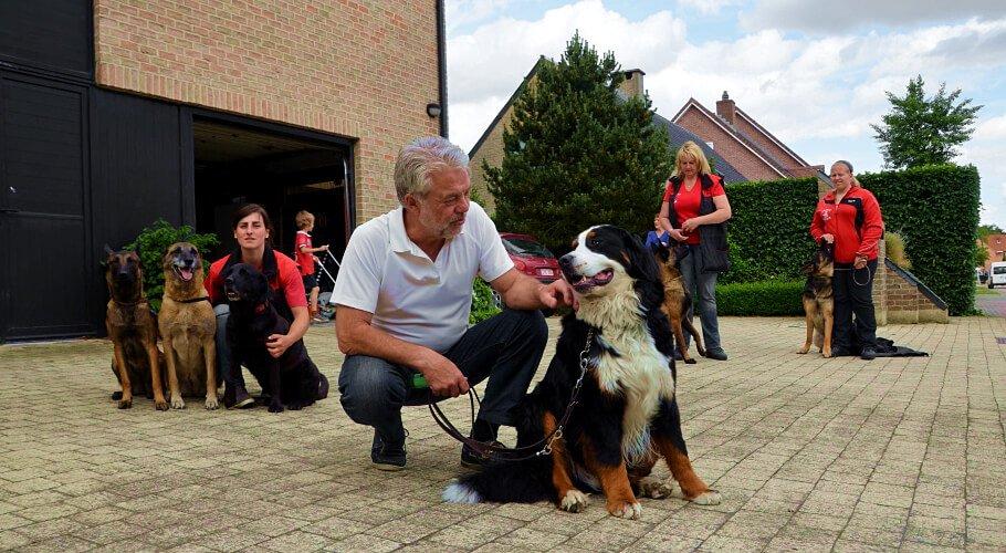 Etólogos Caninos en Bogotá