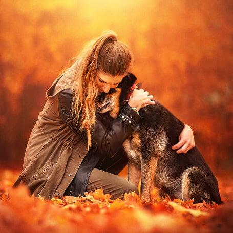Estudio fotográfico para mascotas