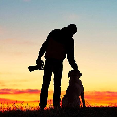 Fotógrafo de perros profesional