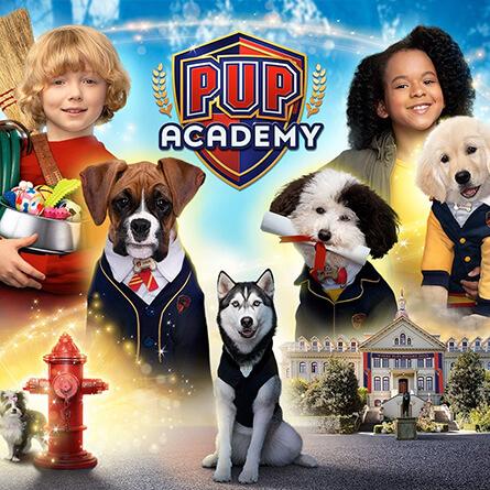 Serie Academia de cachorros