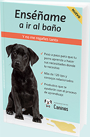 eBook para enseñar al perro a hacer las necesidades donde debe