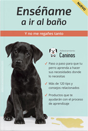 E-book en PDF para enseñar al perro a hacer las necesidades donde debe